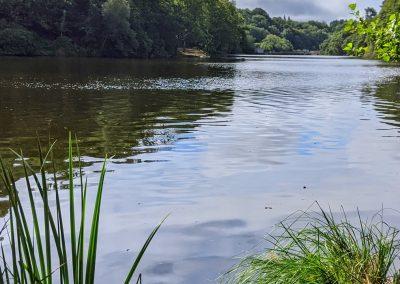 Balades depuis les gîtes Letty du Loch